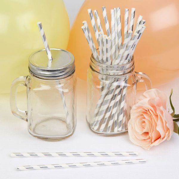 Llama Love Silver Stripes Paper Straws (25)